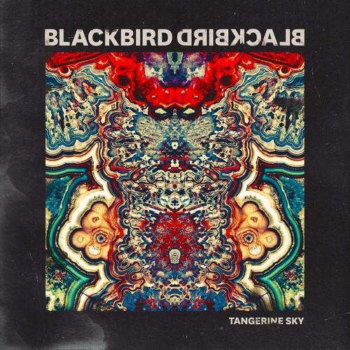 blackbirdblackbird